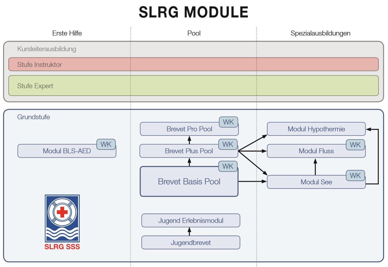 SLRG Module